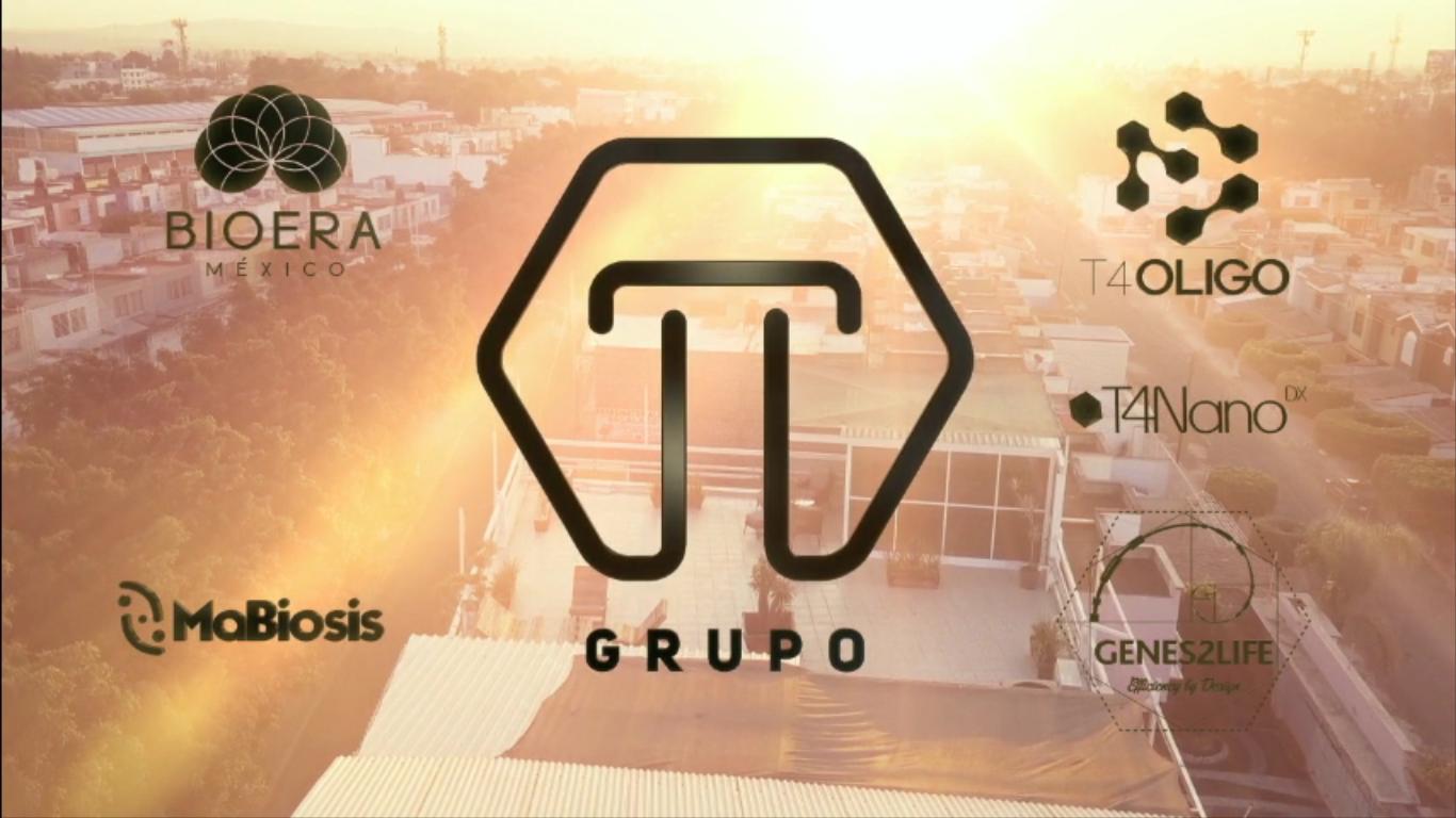 Grupo T